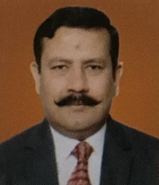 New Delhi 2012-14